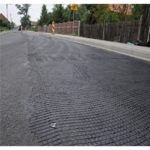 Solid Reinforcing Bidirectional Geogrid for Building pictures & photos