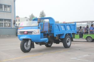 Waw Diesel Engine Three Wheel Vehicle pictures & photos