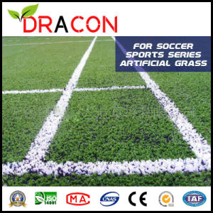 Artificial Football Turf Carpet Grass (G-5504) pictures & photos