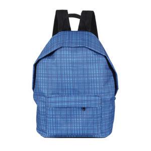 2014 Fation Rucksack Backpack for School (FS12-A33)