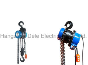 Electric Chain Hoist with Lifting Work (DHSZ) pictures & photos