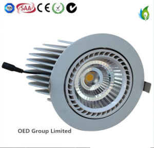40W 6inch Indoor LED Trunk Lighting Downlight with 5years Warranty pictures & photos