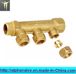 Brass Manifolds (a. 0185) pictures & photos