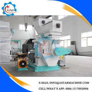 1t/H Automatic Grease Rice Husk Pellet Making Machine pictures & photos