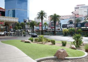 Artificial Grass for Street Decoration