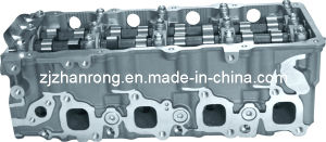 Completed Cylinder Head for RENAULT ZD30 Mascott pictures & photos