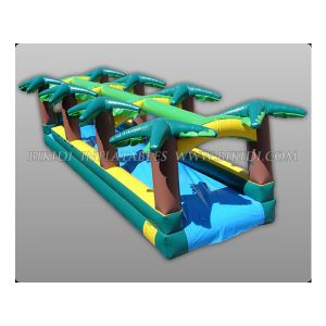 China Inflatable Water Slide Manufacturer (B4086) pictures & photos