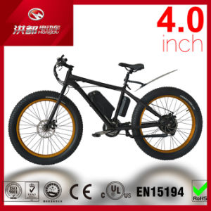MTB Fat Tire Electric Bicycle with 500W Motor Ebike pictures & photos