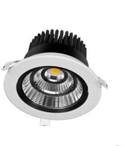 Hot Sale 30W COB LED Spot Light pictures & photos