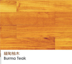 Golden Burma Teak Engineered Flooring Laminated Flooring Wood Flooring pictures & photos