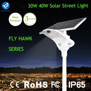 Smart All in One Solar Street Light with Solar Panel pictures & photos