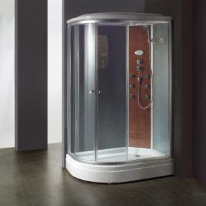 Computer Controlled Sauna Room (BA-Z614) pictures & photos