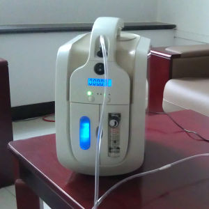 Battery Portable Oxygen Concentrator pictures & photos