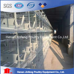 Durable Steel Frame Chicken Egg Poultry Farm Equipment pictures & photos