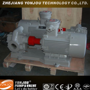 Magnetic Gear Oil Pump pictures & photos