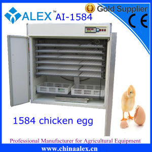 Efficient Energy Saving Industrial Egg Incubator for Sale