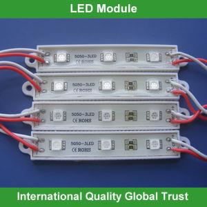Best Price 12V SMD 5050 LED Module