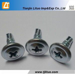 Modified Truss Head Wafer Head Self Drilling Screws pictures & photos