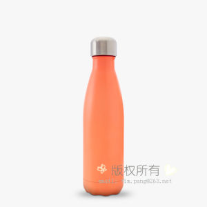 Stainless Steel Coca-Cola Vacuum Bottle pictures & photos