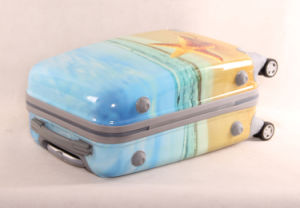 Wholesale Custom Printing Luggage Cover in Stock pictures & photos