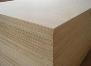 High Quality 5.2mm Birch Plywood for America Market pictures & photos