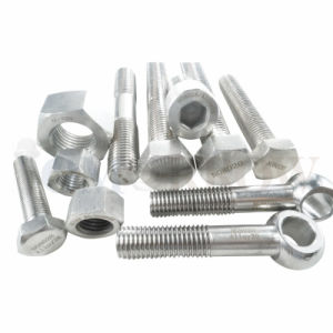 Hot Selling High Quality Exotic Alloy Hastelloy C-22 Hex Bolt/ Hex Nut/ Allen Bolt/ Stud/ Plain Washer pictures & photos