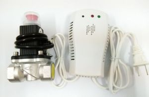 Gas Leakage Detector with Solenoid Valve Dn20 for Gas Company pictures & photos