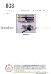 Euro Double Profile Cylinder Lock - Chrome Plated /30X30mm pictures & photos
