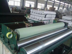 Fish Farm Pond Liner PVC Geomembrane Price pictures & photos