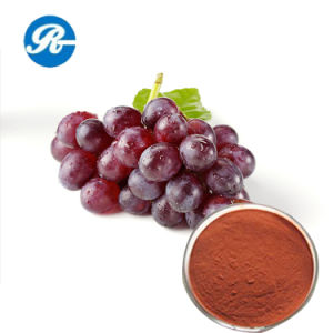 Skin Care Grape Seed Extract pictures & photos