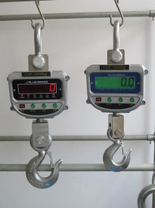 Digital Crane Scale Weighing Scale 3000kg pictures & photos