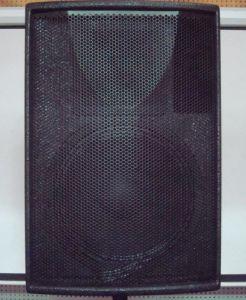 """Passive 12"""" Full Range Professional Audio System"""