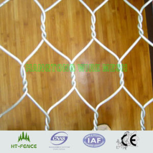 Chicken Wire Mesh (pet fence) pictures & photos