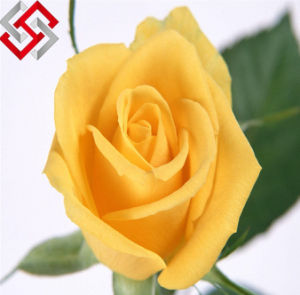 PE Roses Artificial Wedding Flowers Fake Home Garden Decoration