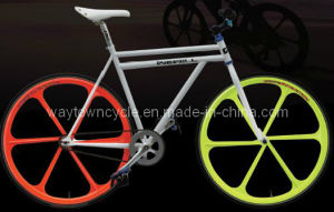 Fixed Bike (WT-2710) pictures & photos