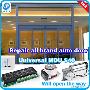 Dunkermotoren Automatic Sliding Driveway Door System pictures & photos