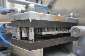 Blister Packing Machine (DPP-250F1) pictures & photos