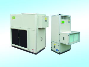 Industrial Dehumidifier (CFT/CST Series) pictures & photos