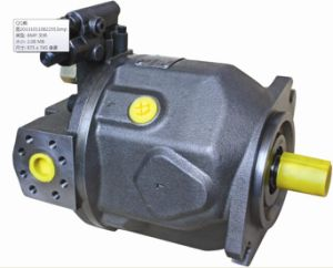 Hydraulic Pump pictures & photos
