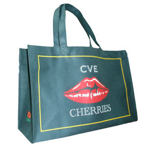 Promotional Bag (XT-B058) pictures & photos