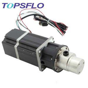 High Pressure Water Sprayer Pump Gear Pump Printing Pump pictures & photos