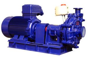 High Efficiency Slurry Pump (TZJS-300-700) pictures & photos