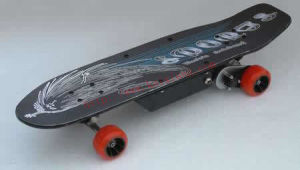 Remote Control Skateboard / Electric Skateboard (RC24V-150C)