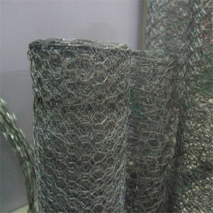 Hexagonal Wire Mesh for Rabbit and Gabion Use pictures & photos
