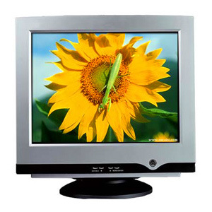 17 inch CRT Monitor Normal Flat (CM179)