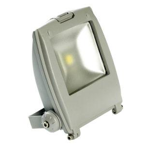 10W LED Spot Light (BJD9-10)