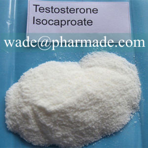Testosterone Isocaproate Powder Raw Steroid Powder Online pictures & photos