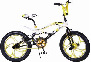 Suspension 3.0 Wheels BMX Freestyle Bicycle BMX Bike pictures & photos