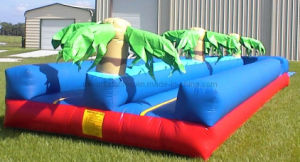 Inflatable Slip and Slide (WS0014)