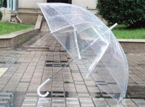 Most Popular Auto Open Fashion Dome Shape Bubble Transparent Umbrella pictures & photos